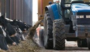 Tracteur-polyculture-elevage-vache